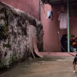 Ringo running through his zipline routine (photo by Venus Liwanag)